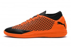 Buty FUTURE 2.4 IT Puma