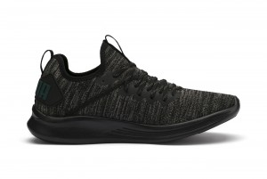 Buty IGNITE Flash evoKNIT Puma Black-Dark Sha