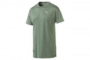 Koszulka Energy SS Tee Laurel Wreath Heather