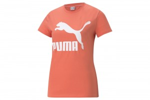 Koszulka Classics Logo Tee (s) Georgia P