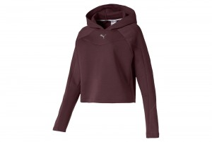 Bluza EVOSTRIPE Hoody Vineyard Wine