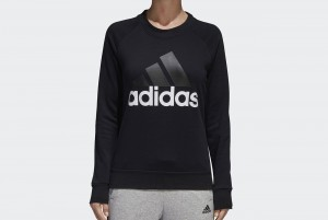 BLUZA Z DL. REKAWEM ESS LIN SWEAT